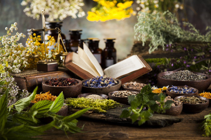 Ayurveds herbs for hair and skin care